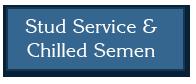 stud-service